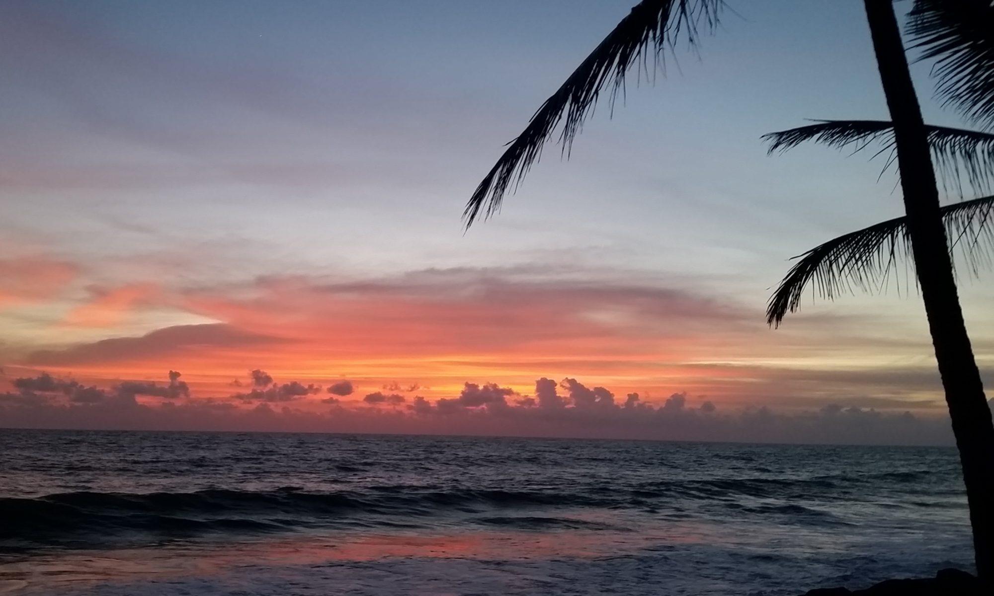 Sri Lanka Island Tours